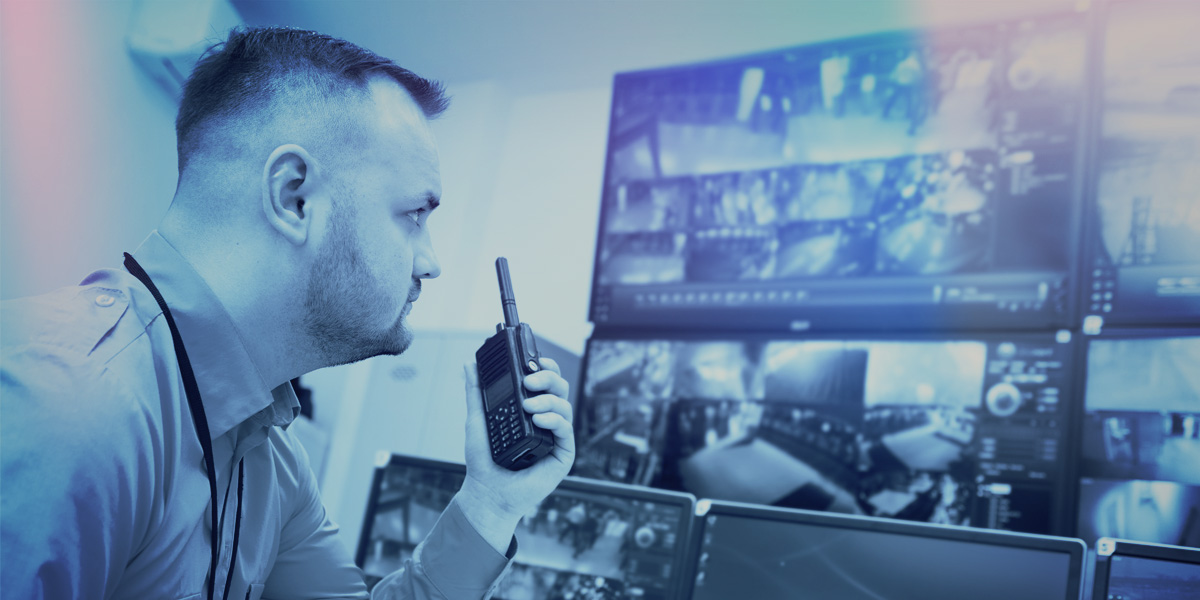 Cctv Monitoring Triton Security